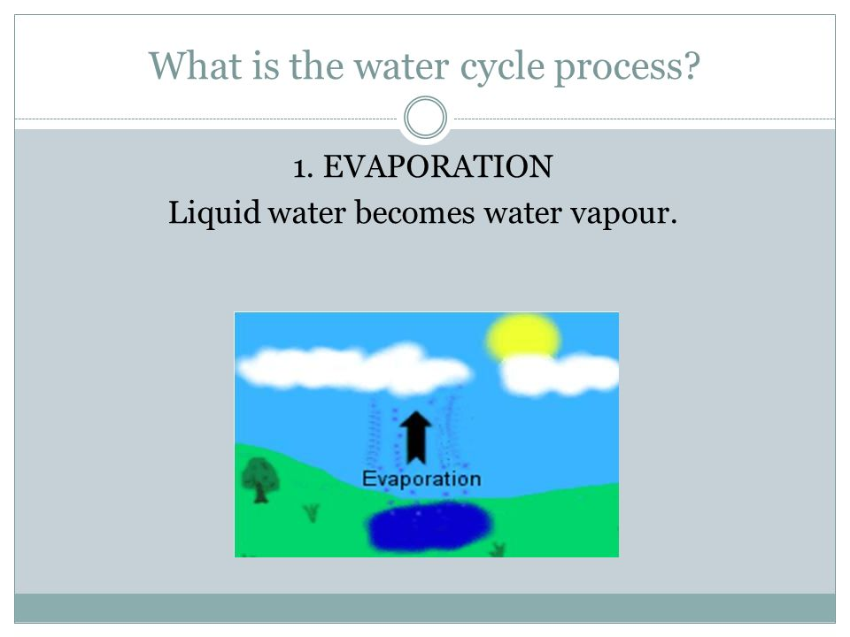 What is the water cycle process 1. EVAPORATION Liquid water becomes water vapour.