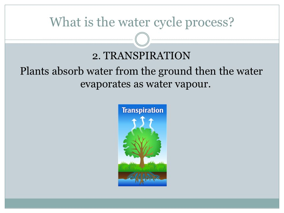 What is the water cycle process. 2.
