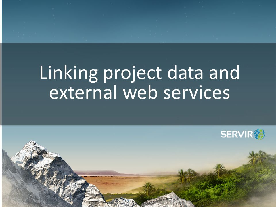 Linking project data and external web services
