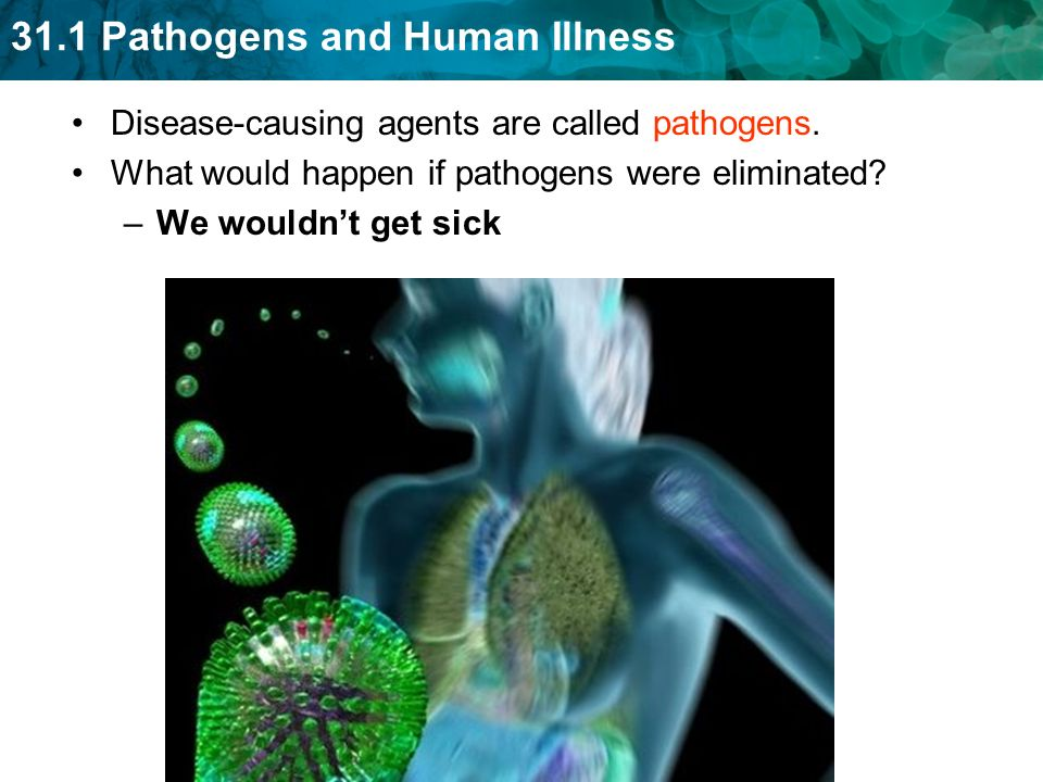 31.1 Pathogens and Human Illness Disease-causing agents are called pathogens.