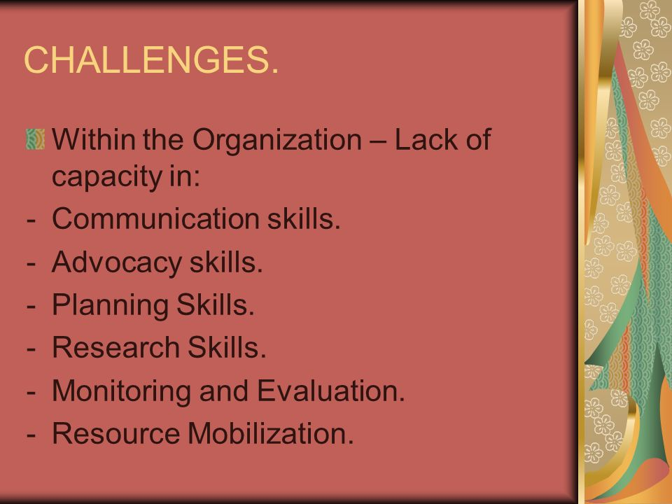CHALLENGES. Within the Organization – Lack of capacity in: -Communication skills.