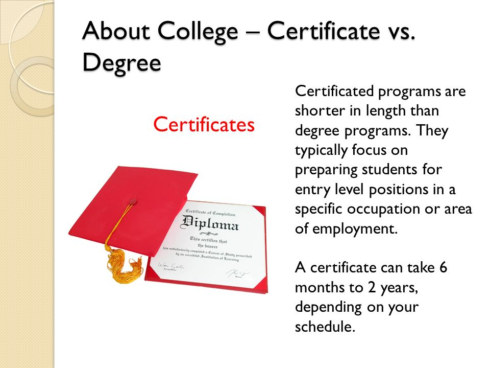 Ready for Your Future? What to Expect in College. - ppt download