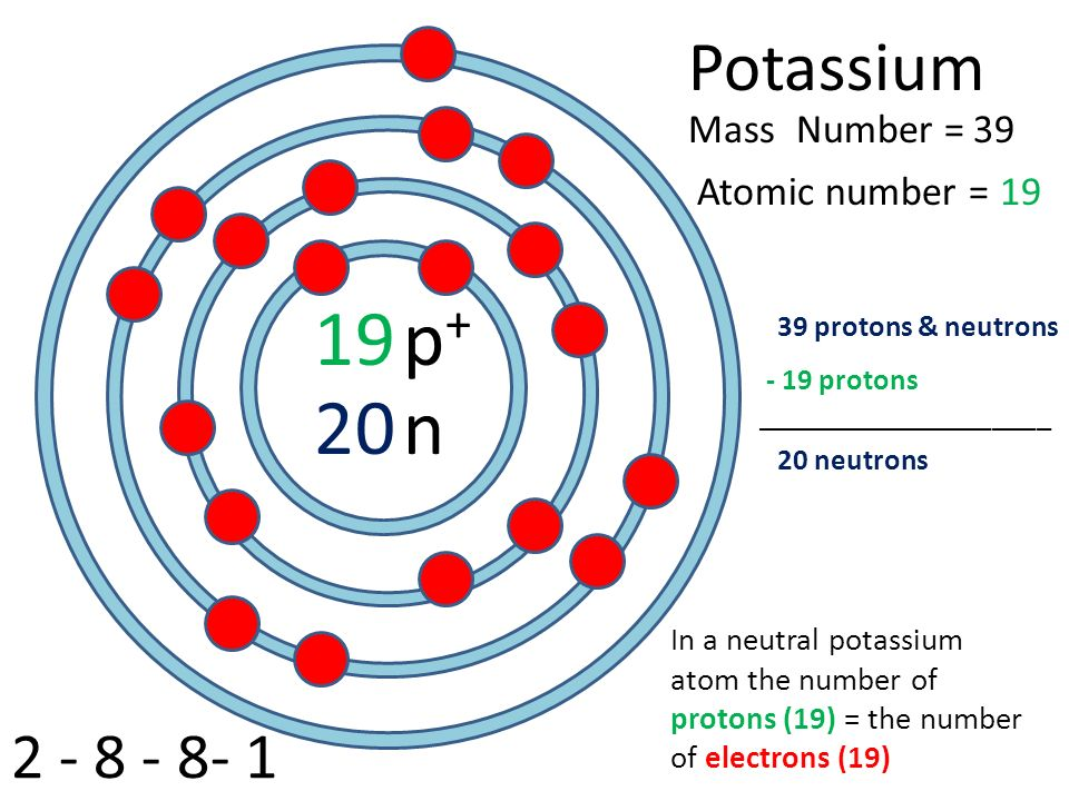 Neutral Atom Potassium Bohr Diagrams Diy Wiring Diagrams