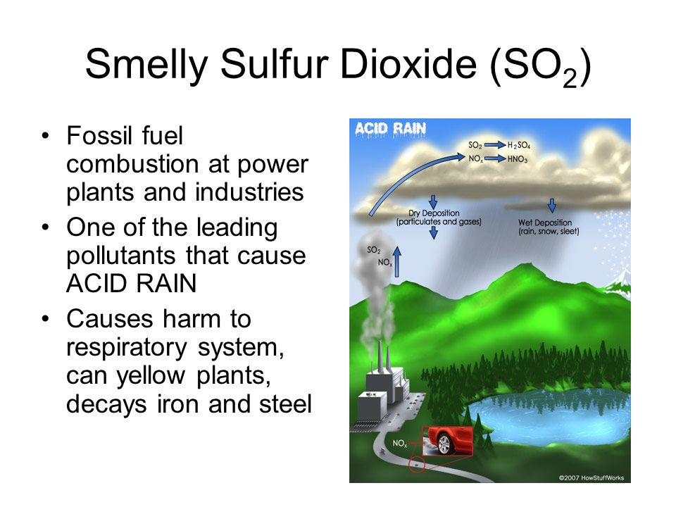 Smelly Sulfur Dioxide (SO 2 ) Fossil fuel combustion at power plants and industries One of the leading pollutants that cause ACID RAIN Causes harm to respiratory system, can yellow plants, decays iron and steel