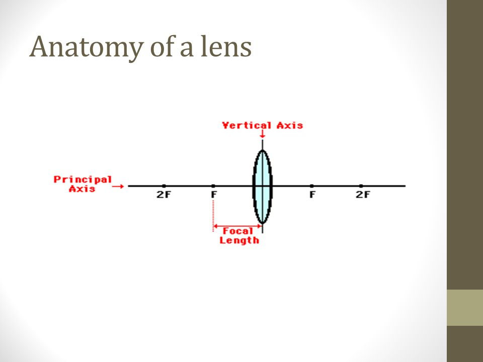 Refraction and lenses. Why is it that when you dip a pencil in a jar ...