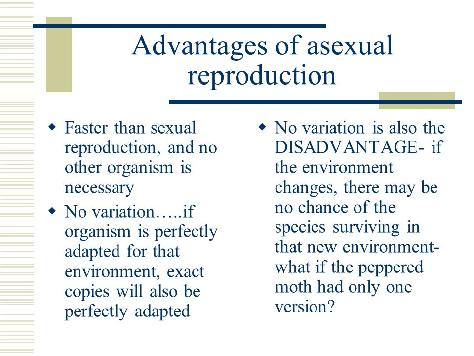 Asexual reproduction related words to inference