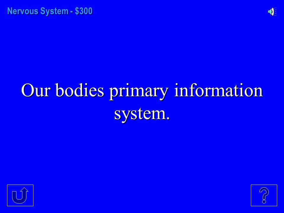 Nervous System - $200 The two divisions of the Peripheral Nervous System.