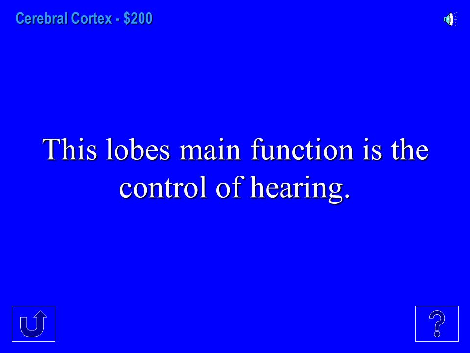 Cerebral Cortex - $100 Visual Information is received in this lobe.