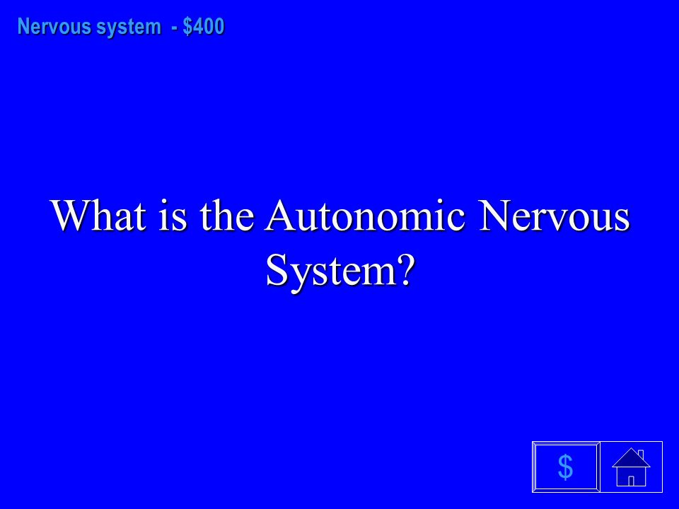 Nervous system - $300 What is the Nervous System $