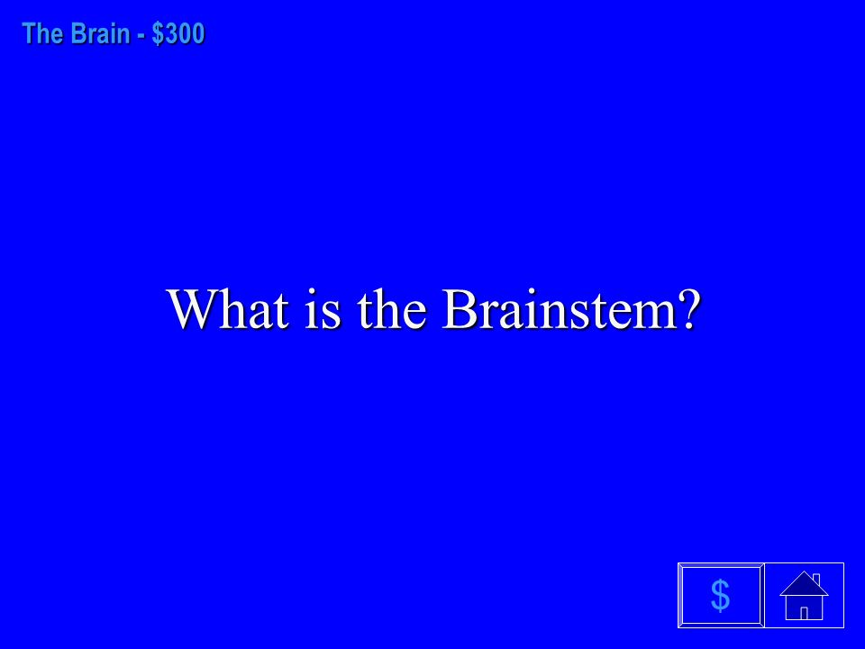 The Brain - $200 What is the Hypothalamus $