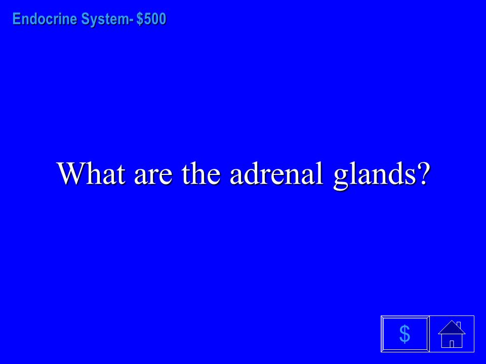 Endocrine System - $400 What is the pituitary gland $