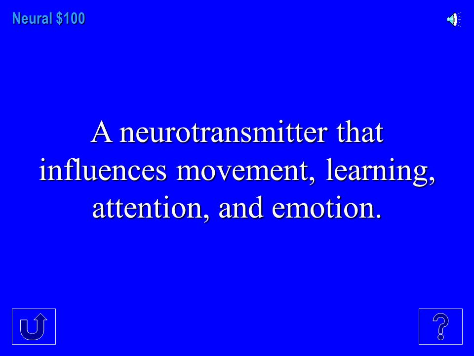 NEURAL COMMUNICATION NERVOUS SYSTEM THE BRAIN CEREBRAL CORTEX ENDOCRINE SYSTEM $100 $300 $200 $400 $500 $