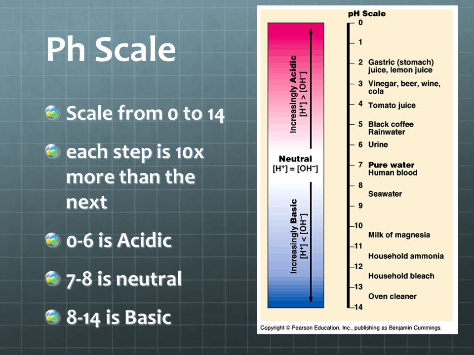 Ph Scale Scale from 0 to 14 each step is 10x more than the next 0-6 is Acidic 7-8 is neutral 8-14 is Basic