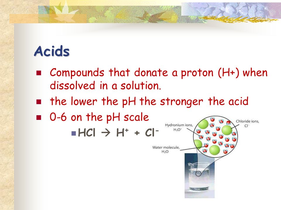 Acids Compounds that donate a proton (H+) when dissolved in a solution.