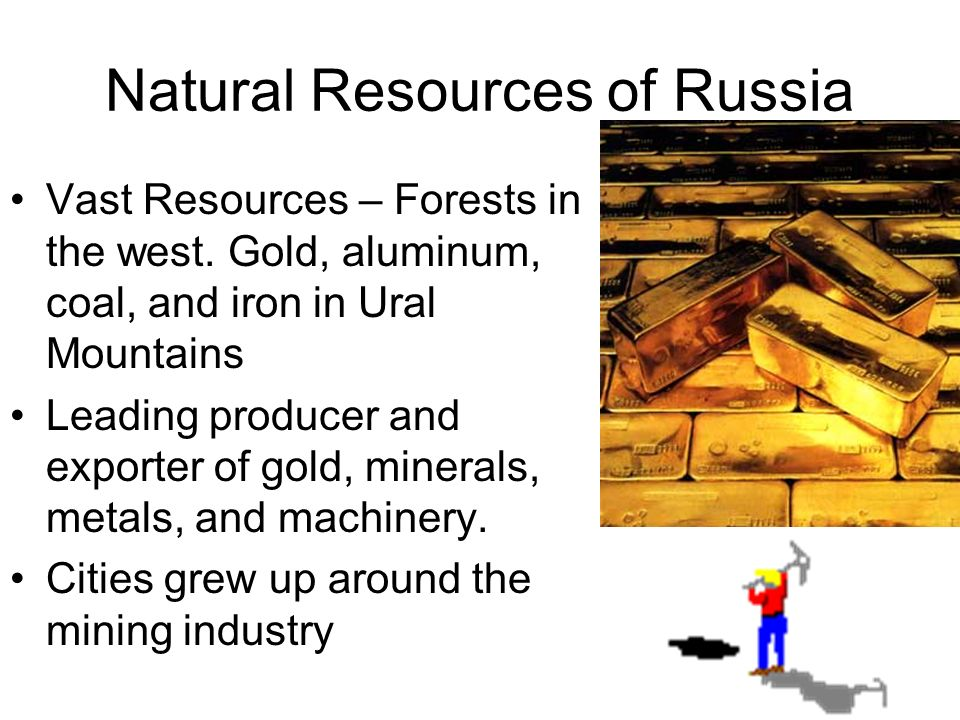 Natural Resources of Russia Vast Resources – Forests in the west.