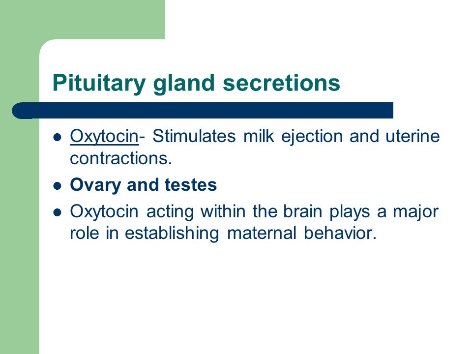 Pituitary gland secretions Oxytocin- Stimulates milk ejection and uterine contractions.