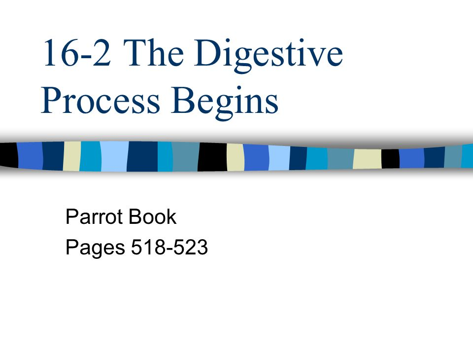 16-2 The Digestive Process Begins Parrot Book Pages