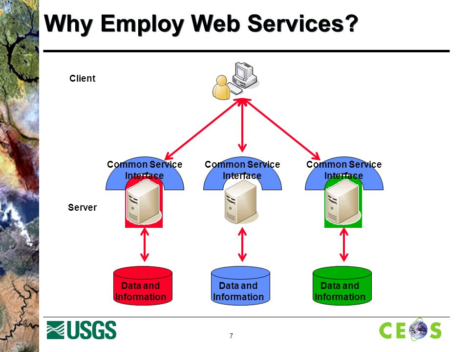 7 Why Employ Web Services.