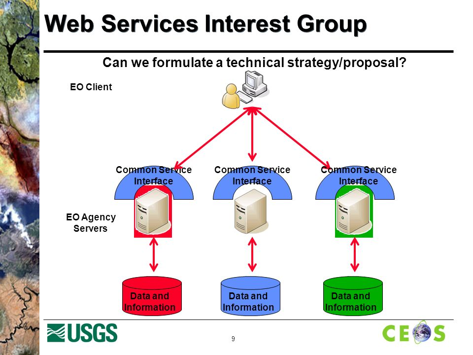 9 Web Services Interest Group Data and Information EO Client EO Agency Servers Data and Information Common Service Interface Data and Information Can we formulate a technical strategy/proposal.