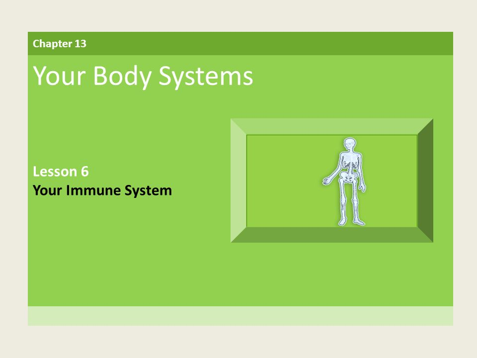Chapter 13 Your Body Systems Lesson 6 Your Immune System