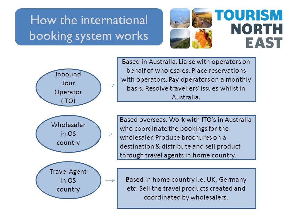 WORKING WITH INTERNATIONAL MARKETS  The International Traveller Some