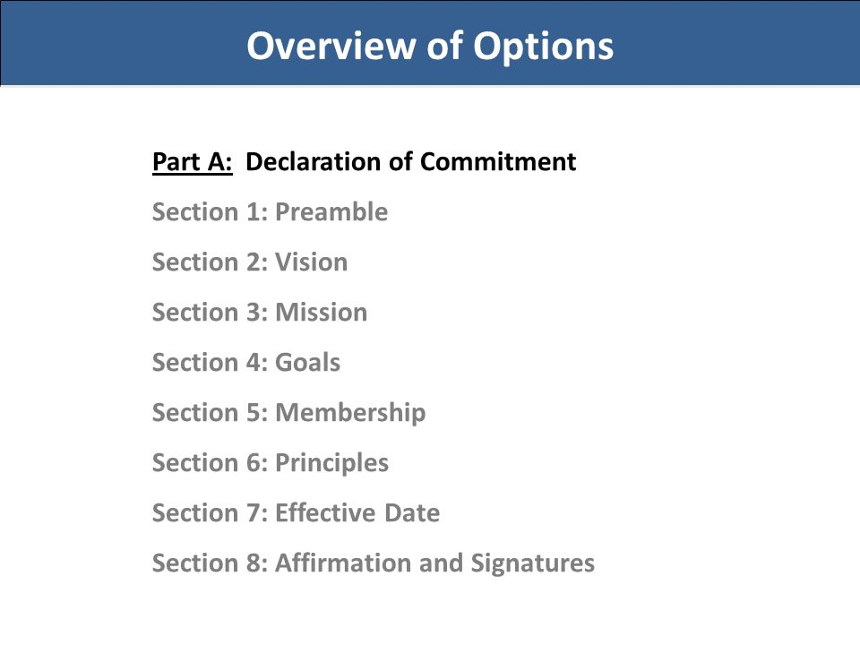 Overview of Options Part A: Declaration of Commitment Section 1: Preamble Section 2: Vision Section 3: Mission Section 4: Goals Section 5: Membership Section 6: Principles Section 7: Effective Date Section 8: Affirmation and Signatures