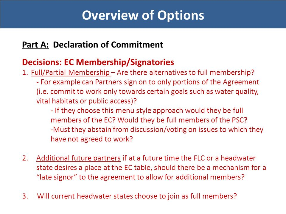 Overview of Options Part A: Declaration of Commitment Decisions: EC Membership/Signatories 1.Full/Partial Membership – Are there alternatives to full membership.
