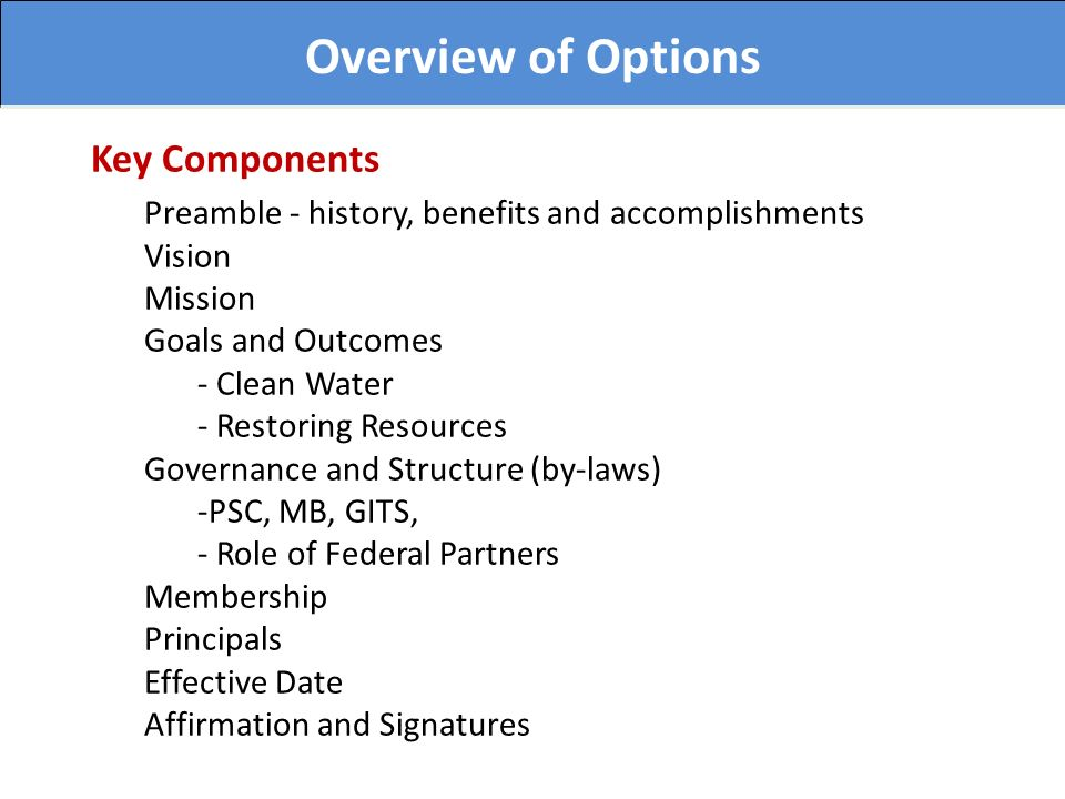 Overview of Options Key Components Preamble - history, benefits and accomplishments Vision Mission Goals and Outcomes - Clean Water - Restoring Resources Governance and Structure (by-laws) -PSC, MB, GITS, - Role of Federal Partners Membership Principals Effective Date Affirmation and Signatures