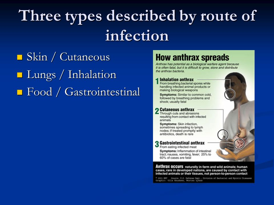 Three types described by route of infection Skin / Cutaneous Skin / Cutaneous Lungs / Inhalation Lungs / Inhalation Food / Gastrointestinal Food / Gastrointestinal
