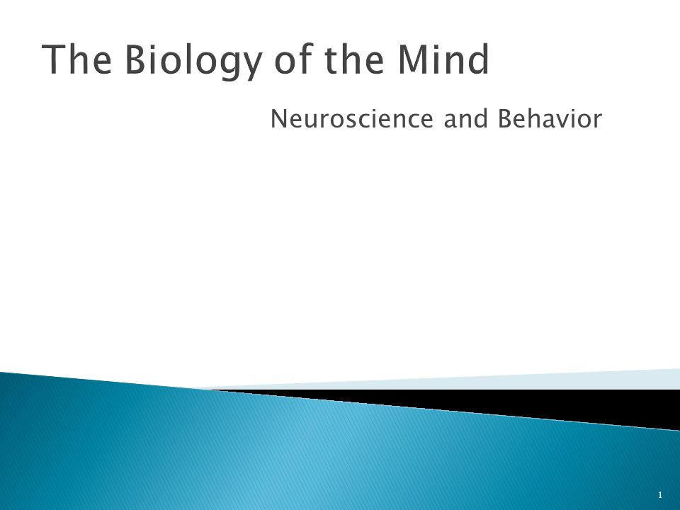 Neuroscience and Behavior 1 The Biology of the Mind