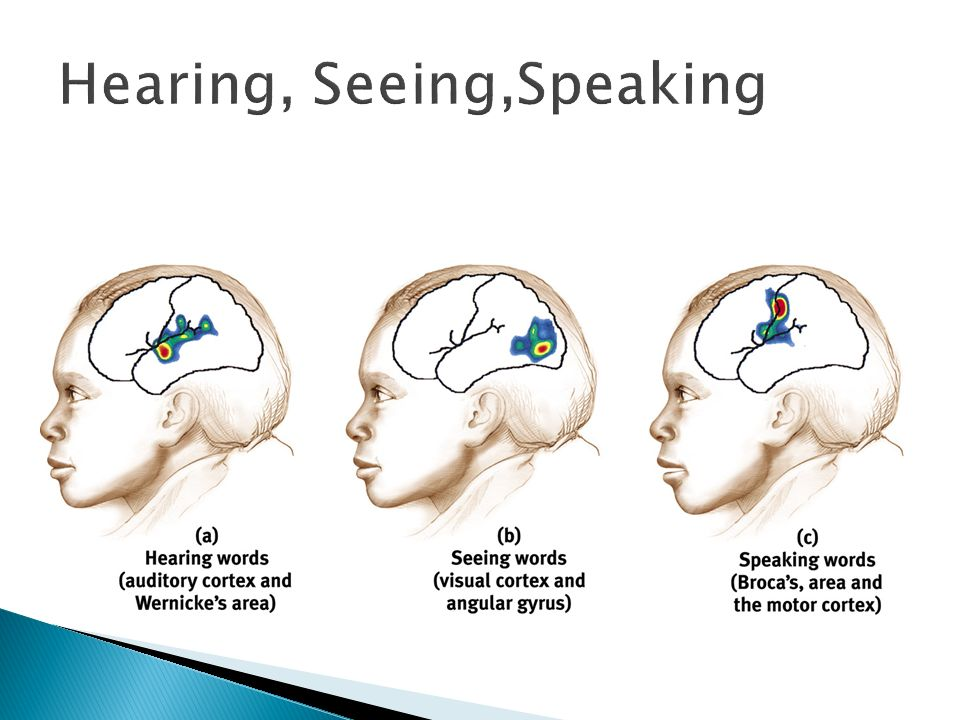 Hearing, Seeing,Speaking