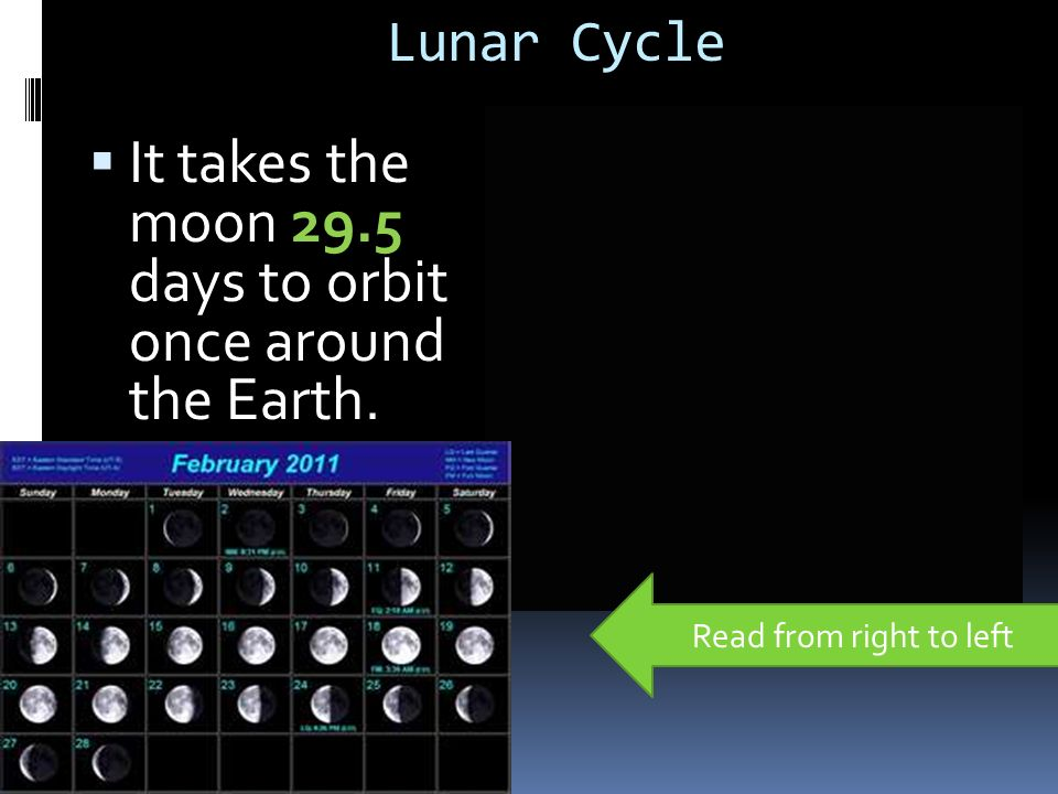 Lunar Cycle  It takes the moon 29.5 days to orbit once around the Earth. Read from right to left