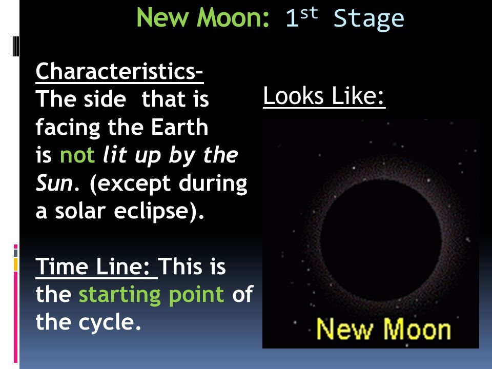 New Moon: 1 st Stage Characteristics– The side that is facing the Earth is not lit up by the Sun.