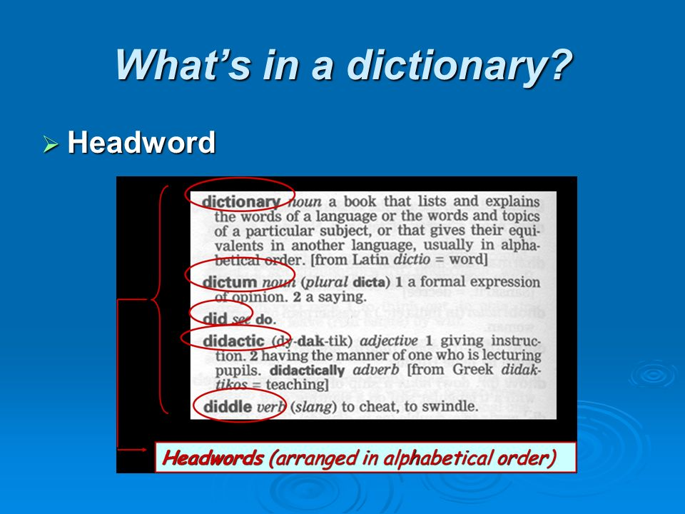 What's in a dictionary  Headword