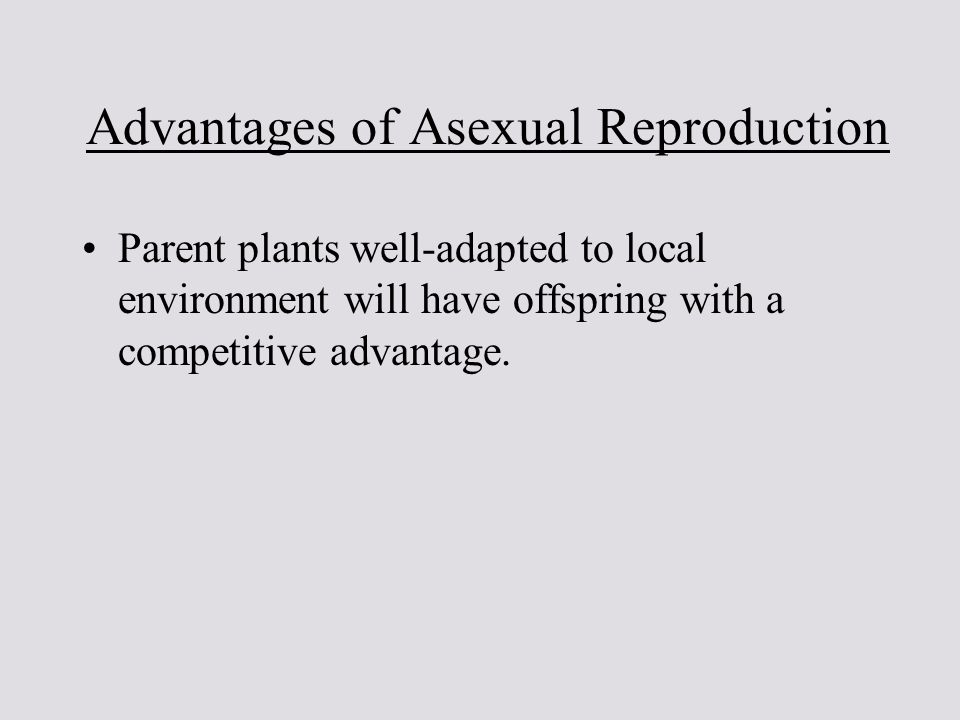 Pollen evolutionary advantages to asexual reproduction