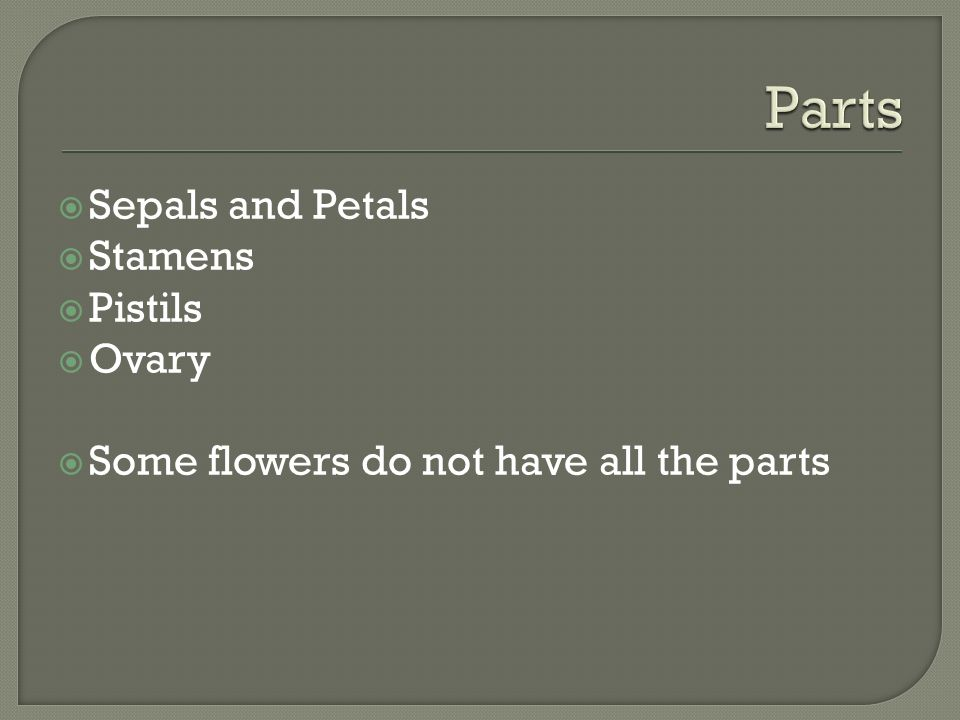 Sepals and Petals  Stamens  Pistils  Ovary  Some flowers do not have all the parts