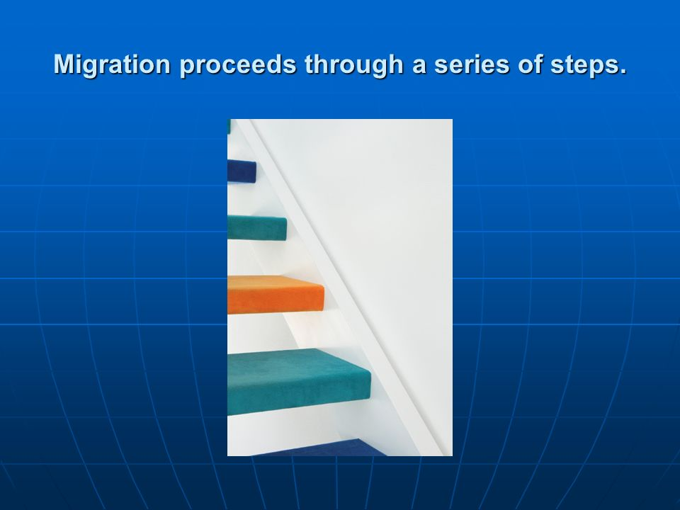 Migration proceeds through a series of steps.