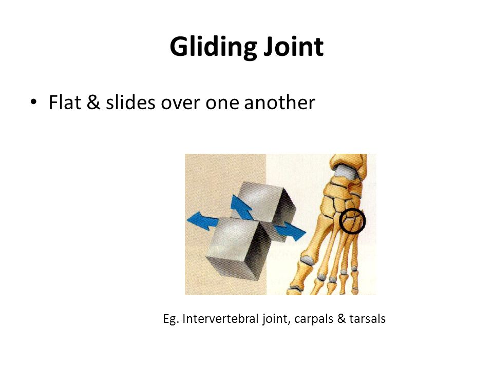 Joint Mechanics. Joint Classification Joints classified according to ...