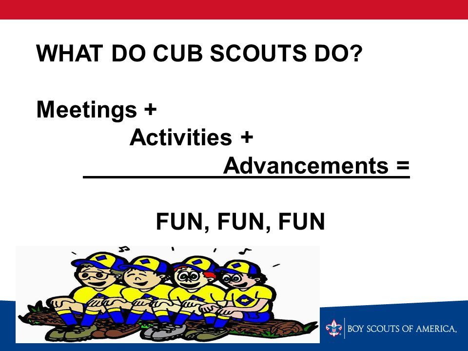 WELCOME TO CUB SCOUTS Round-up Flip Chart  What is Cub