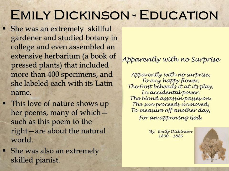 an analysis of the love theme in emily dickinsons poetry Emily dickinson's love poems: an analysis of emily dickinson's poems about love april 25, 2018 by trenton lorcher i love football, chainsaws, boxing, dogs, and wrestling.