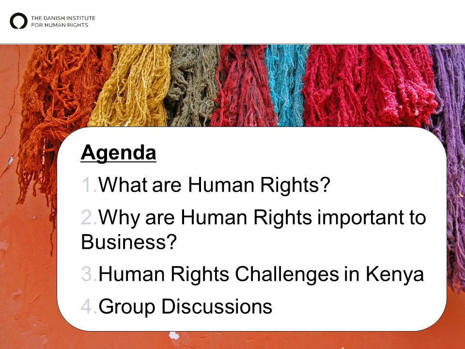 Agenda 1.What are Human Rights. 2.Why are Human Rights important to Business.