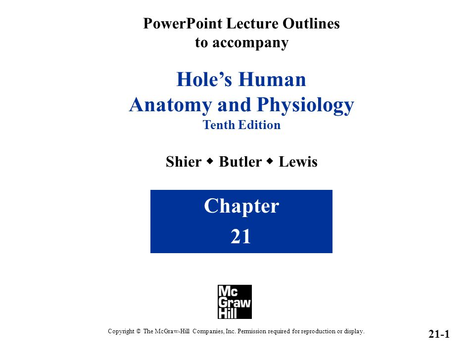 PowerPoint Lecture Outlines to accompany Hole\'s Human Anatomy and ...