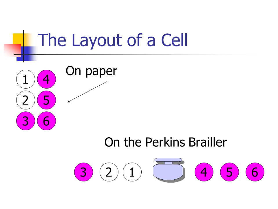Teaching And Learning Of The Nemeth Braille Code Numeric Indicator