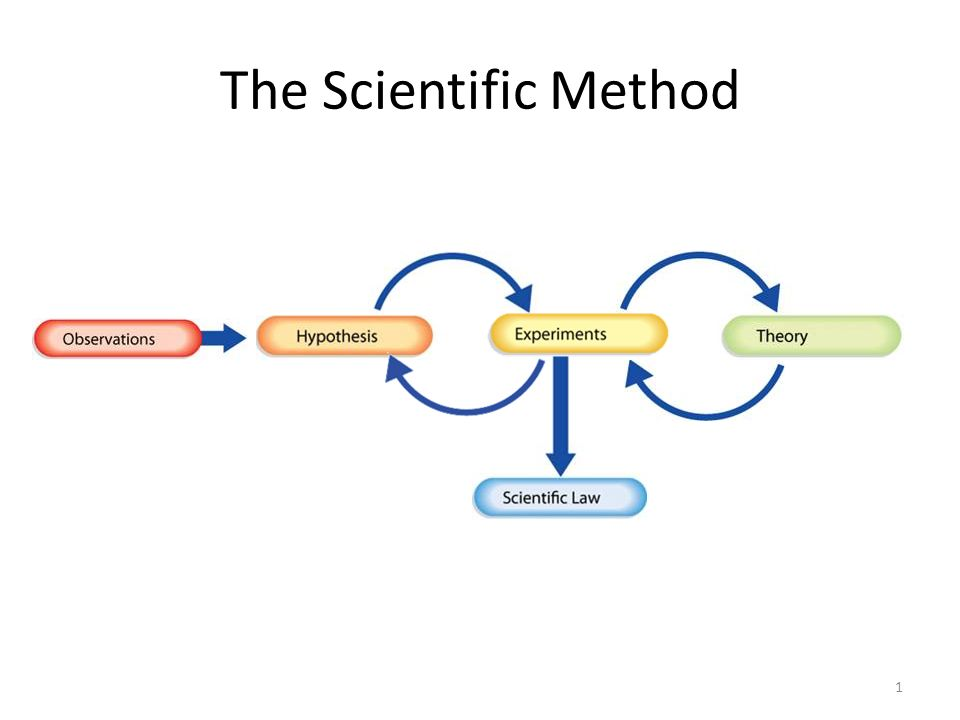 The Scientific Method 1