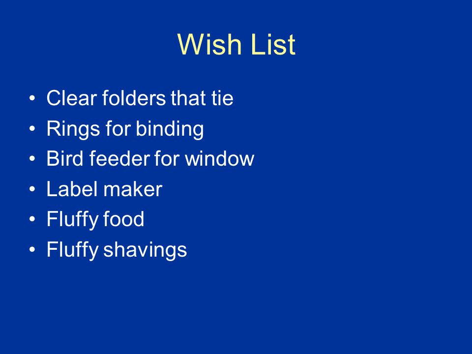 Class Wish List Food and Shavings for Fluffy Prizes for treasure box (no candy please) Healthy snacks Material for printer White t shirts Water bottles