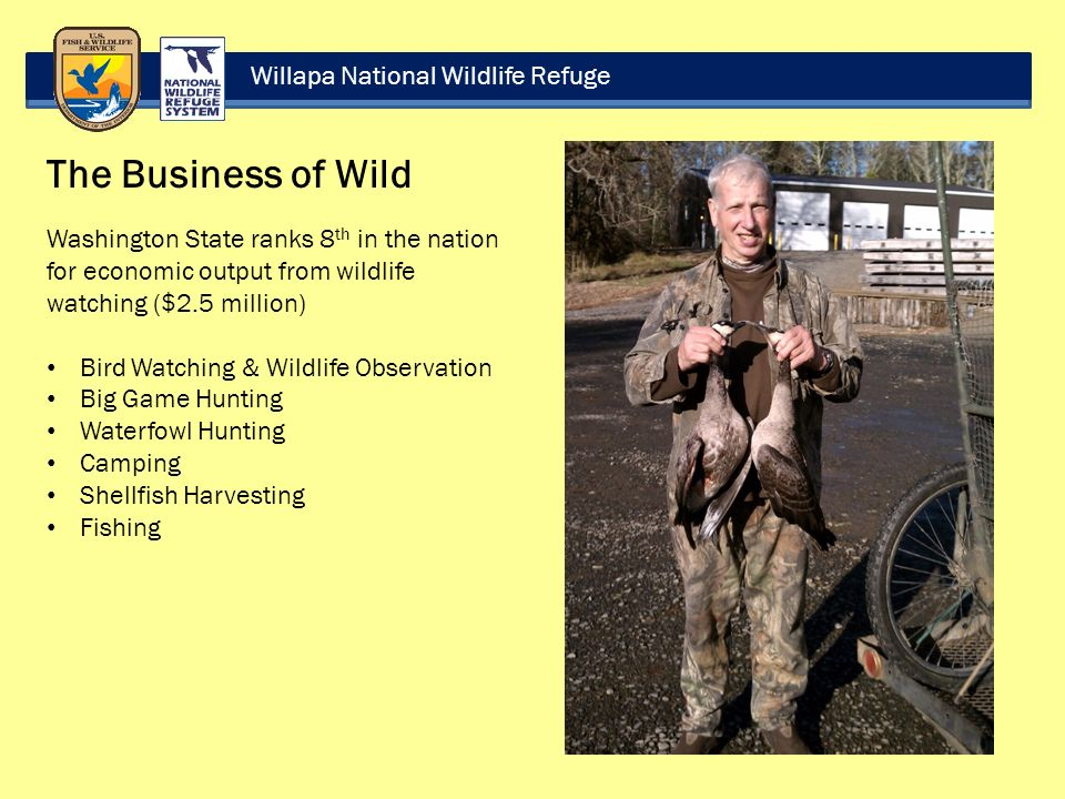 Willapa National Wildlife Refuge The Business of Wild Washington State ranks 8 th in the nation for economic output from wildlife watching ($2.5 million) Bird Watching & Wildlife Observation Big Game Hunting Waterfowl Hunting Camping Shellfish Harvesting Fishing