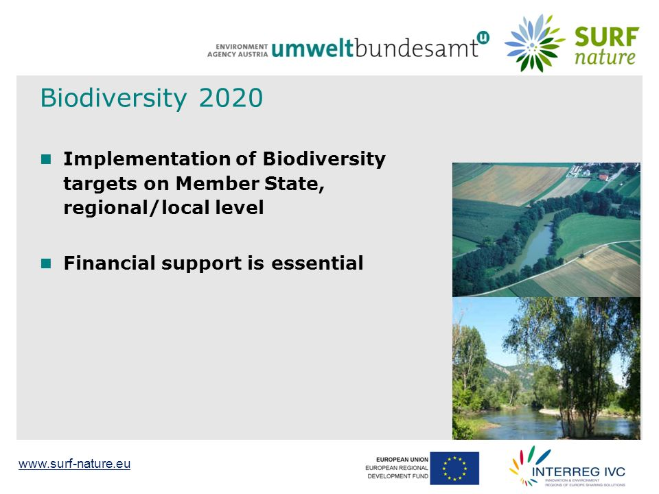 Biodiversity 2020 Implementation of Biodiversity targets on Member State, regional/local level Financial support is essential 7