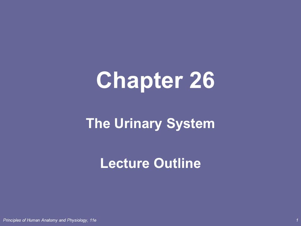 Principles of Human Anatomy and Physiology, 11e1 Chapter 26 The