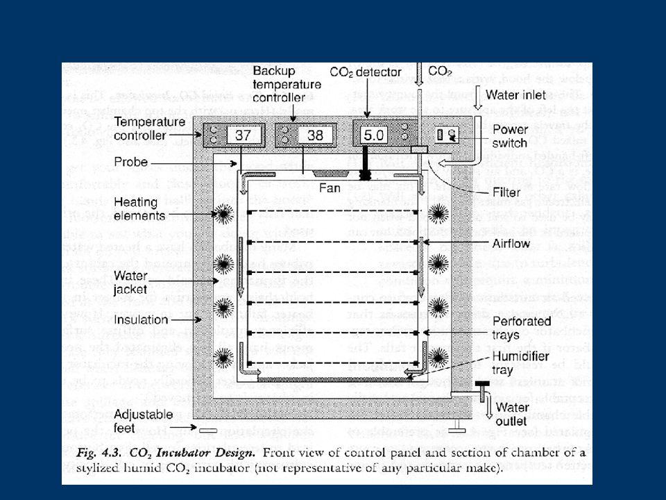 Basic Requirement For Laboratory Design - ppt video online download