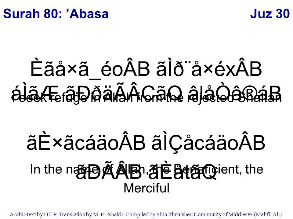 Juz 30 Arabic text by DILP, Translation by M  H  Shakir
